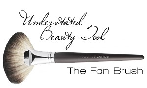 fan brush how
